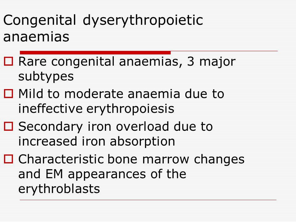 Congenital dyserythropoietic anaemias