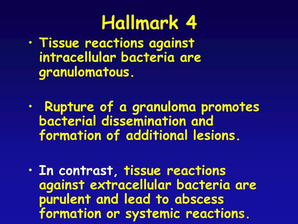 Hallmark 4 Tissue reactions against intracellular bacteria are granulomatous.