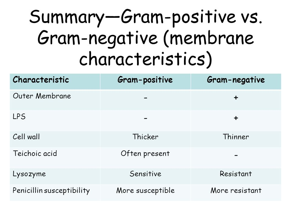 Summary—Gram-positive vs. Gram-negative (membrane characteristics)