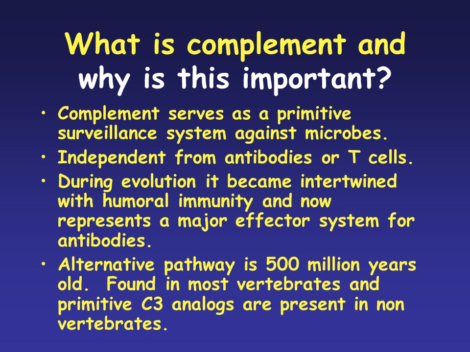 What is complement and why is this important