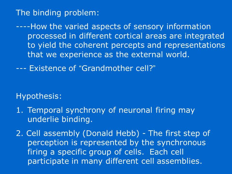 The binding problem: