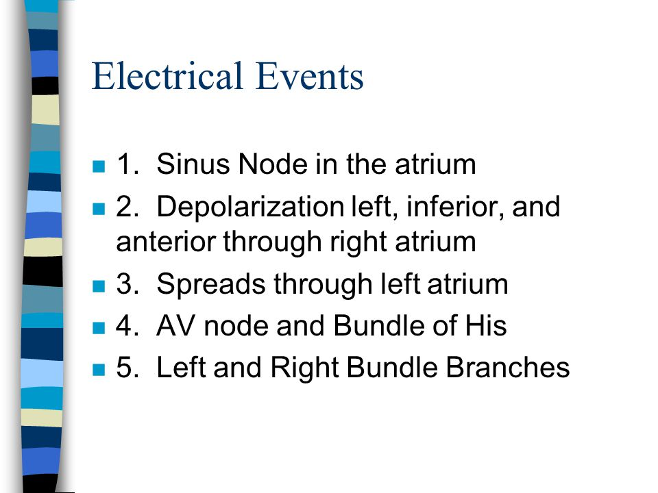 Electrical Events 1. Sinus Node in the atrium