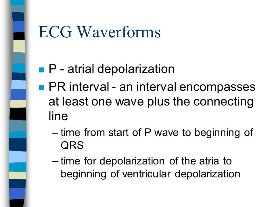 ECG Waverforms P - atrial depolarization