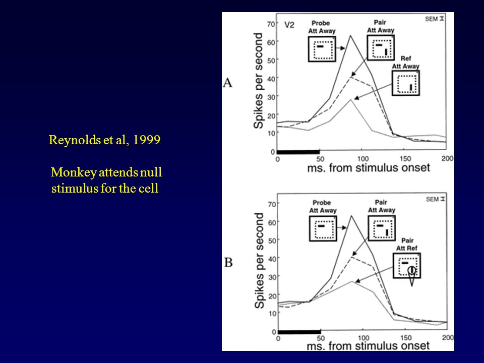 Reynolds et al, 1999 Monkey attends null stimulus for the cell
