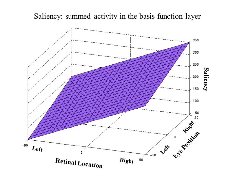 Saliency: summed activity in the basis function layer