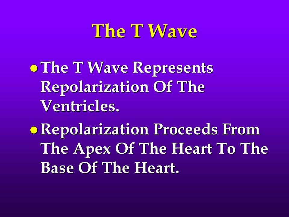 The T Wave The T Wave Represents Repolarization Of The Ventricles.