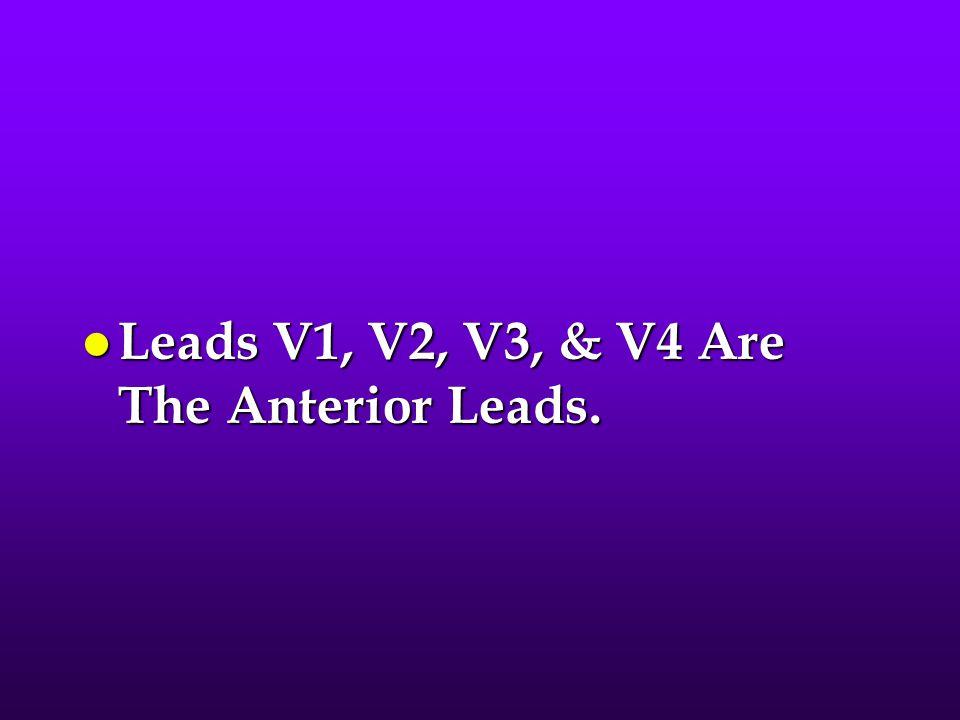 Leads V1, V2, V3, & V4 Are The Anterior Leads.