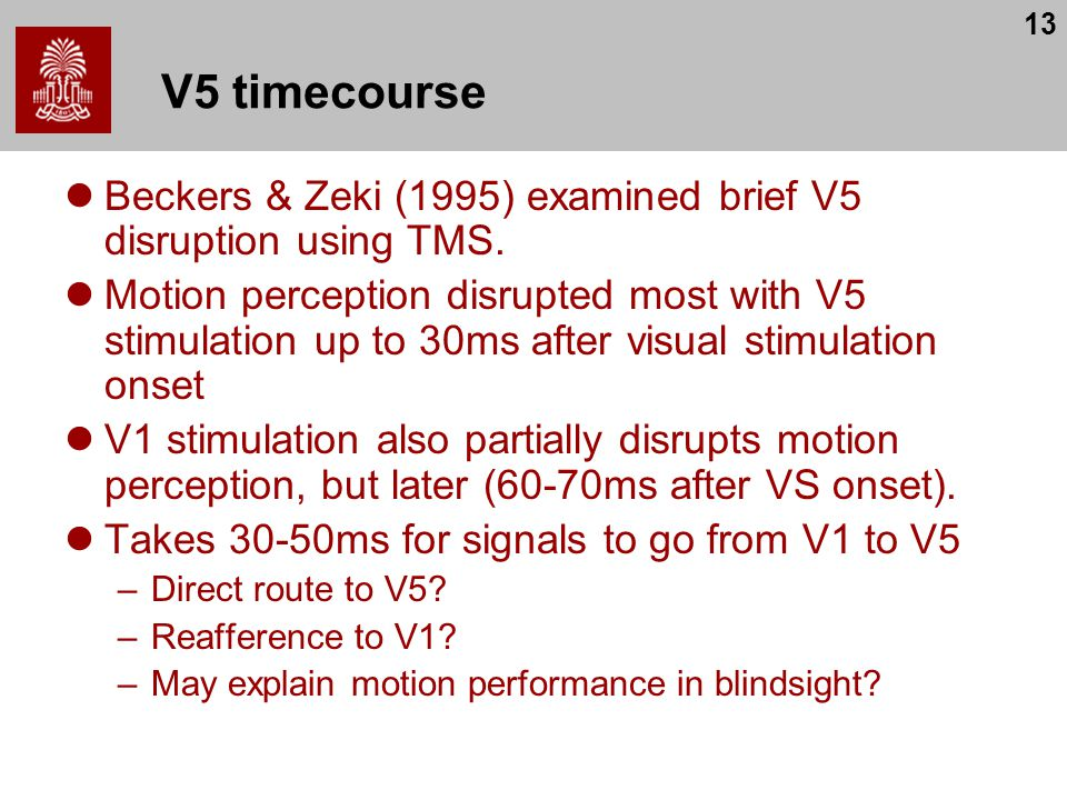 V5 timecourse Beckers & Zeki (1995) examined brief V5 disruption using TMS.