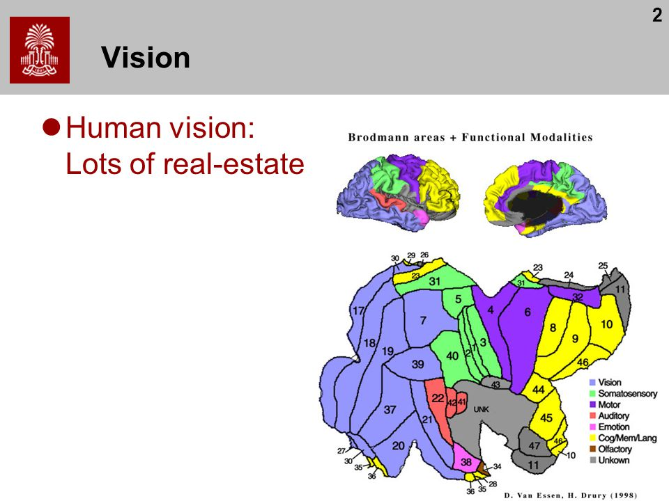 Vision Human vision: Lots of real-estate