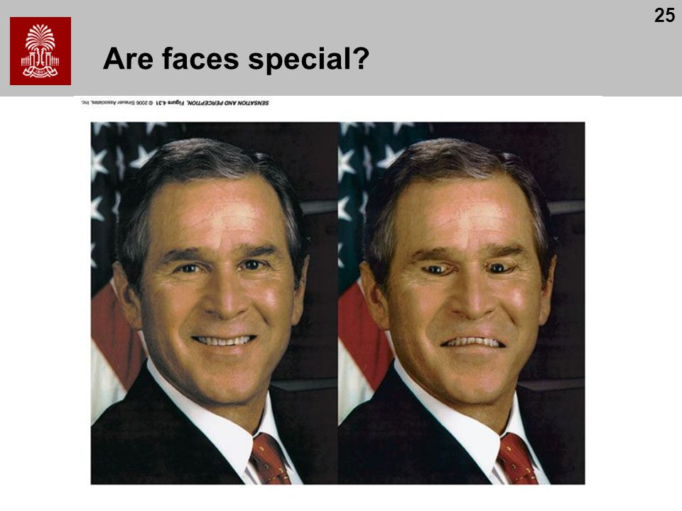 Are faces special