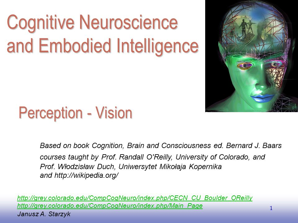 Cognitive Neuroscience and Embodied Intelligence