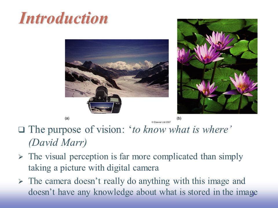 Introduction The purpose of vision: 'to know what is where' (David Marr)