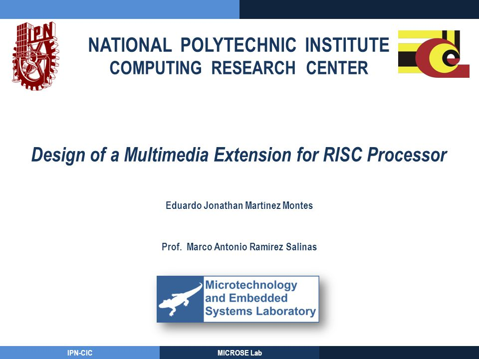 Design of a Multimedia Extension for RISC Processor