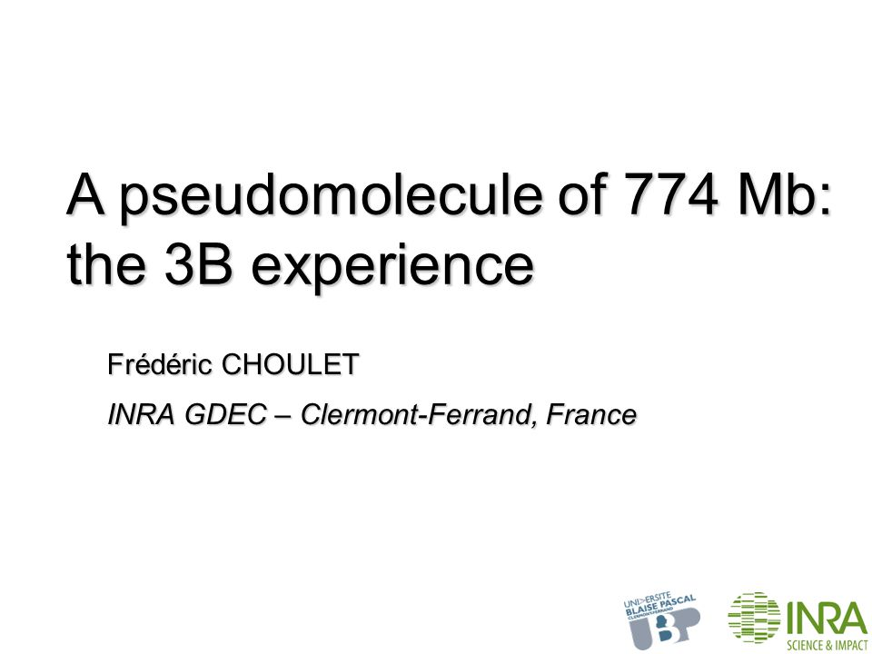 A pseudomolecule of 774 Mb: the 3B experience