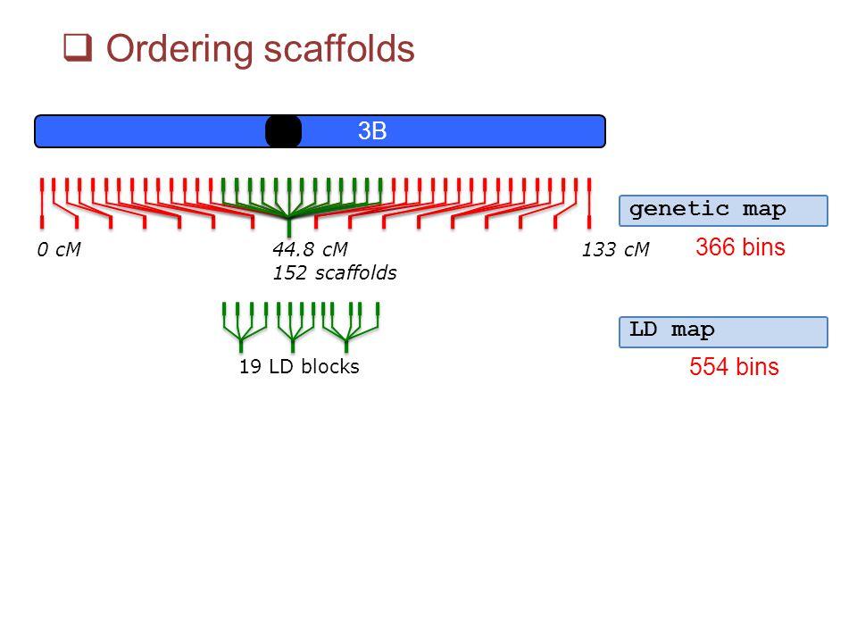 Ordering scaffolds 3B genetic map 366 bins LD map 554 bins 0 cM