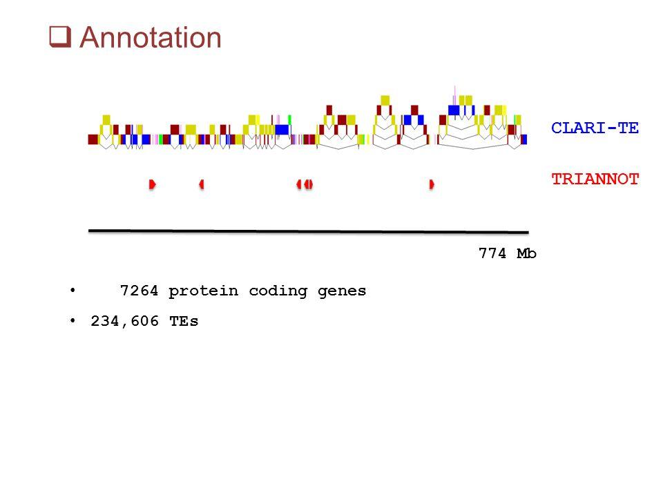 Annotation CLARI-TE TRIANNOT 774 Mb 7264 protein coding genes