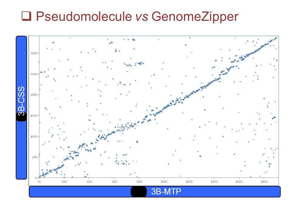 Pseudomolecule vs GenomeZipper