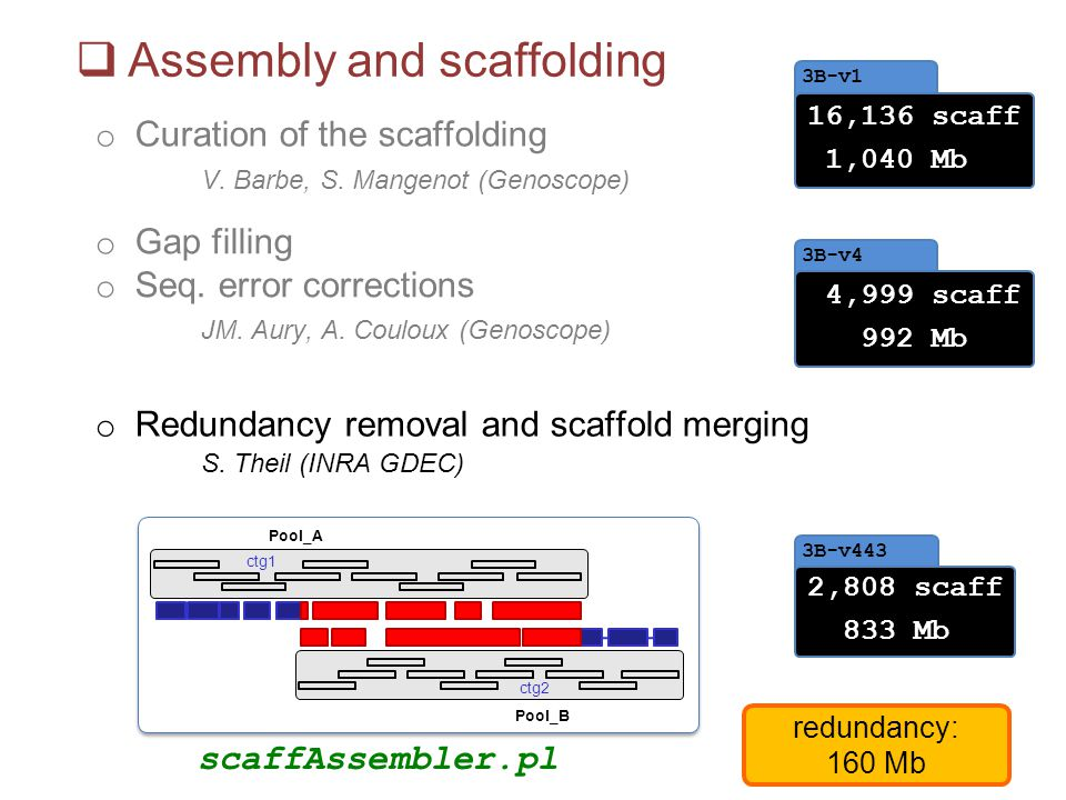 Assembly and scaffolding