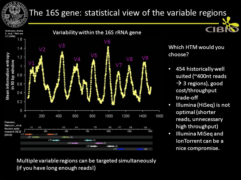 The 16S gene: statistical view of the variable regions