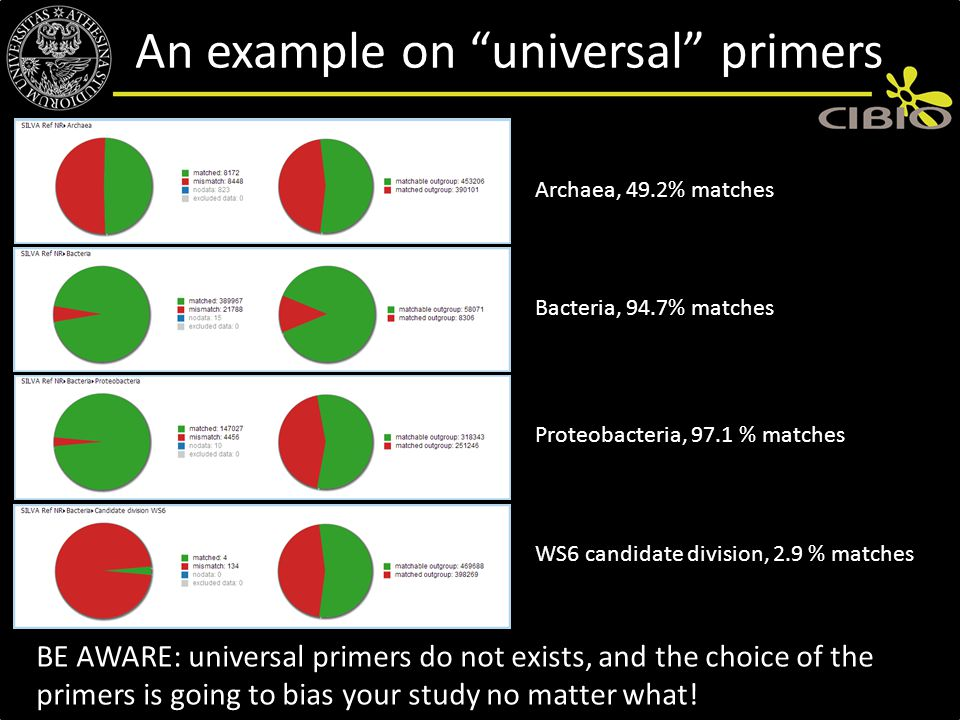 An example on universal primers