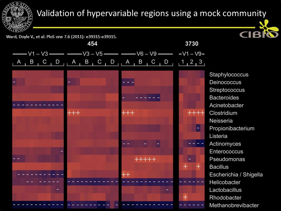 Validation of hypervariable regions using a mock community