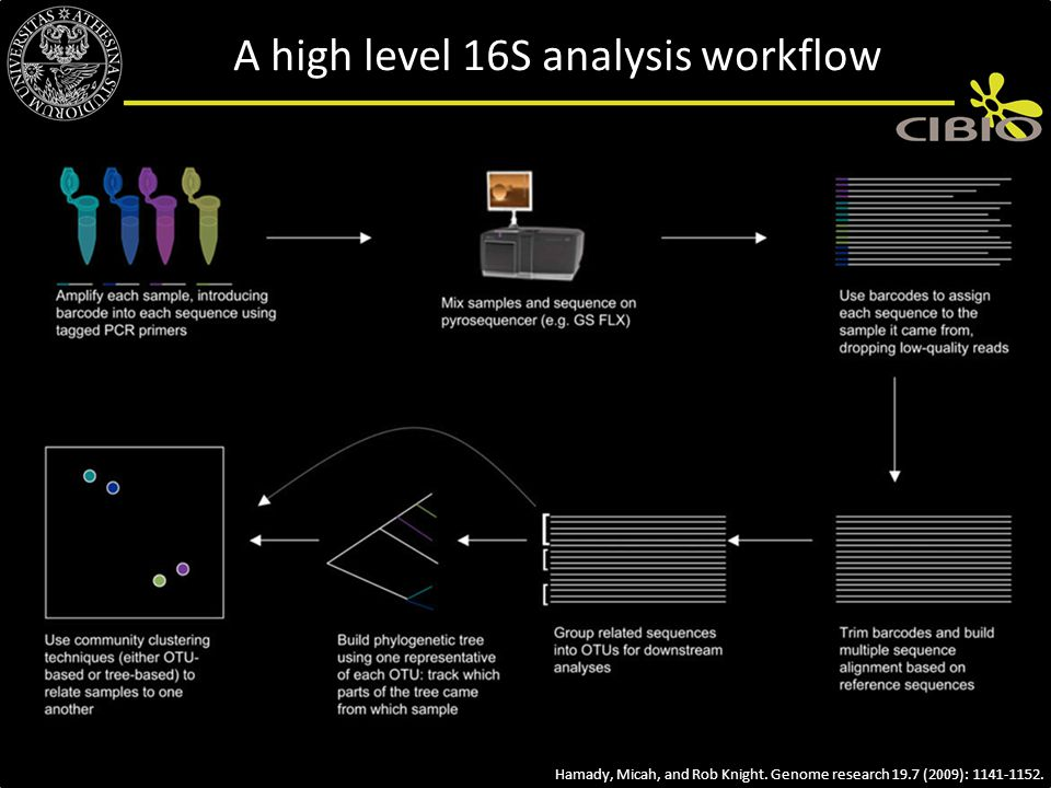 A high level 16S analysis workflow