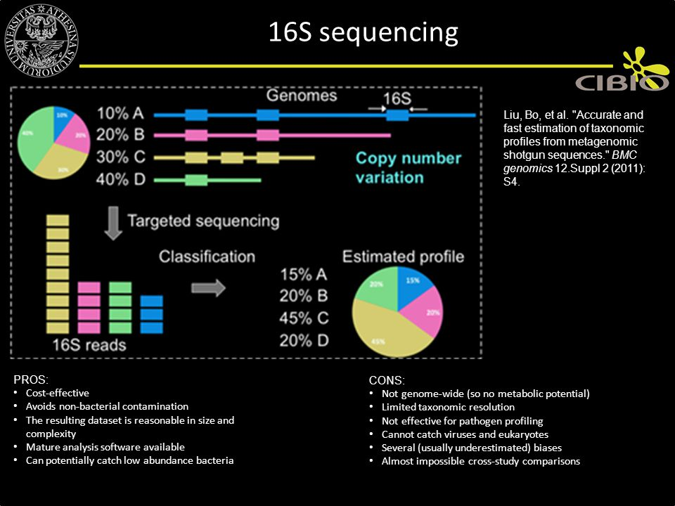 16S sequencing