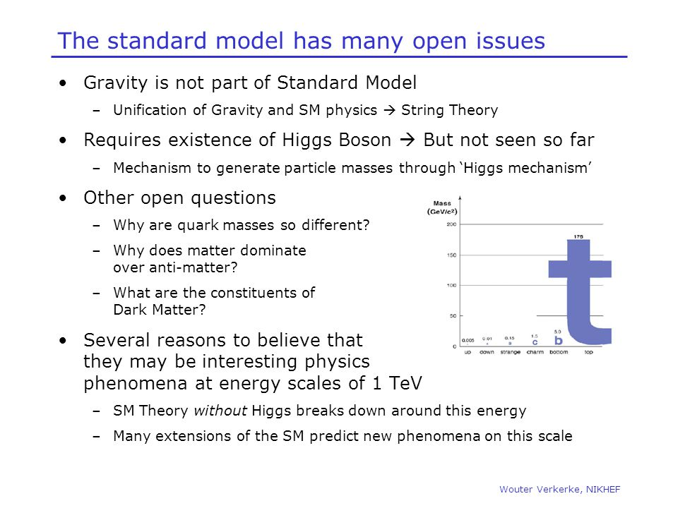 The standard model has many open issues