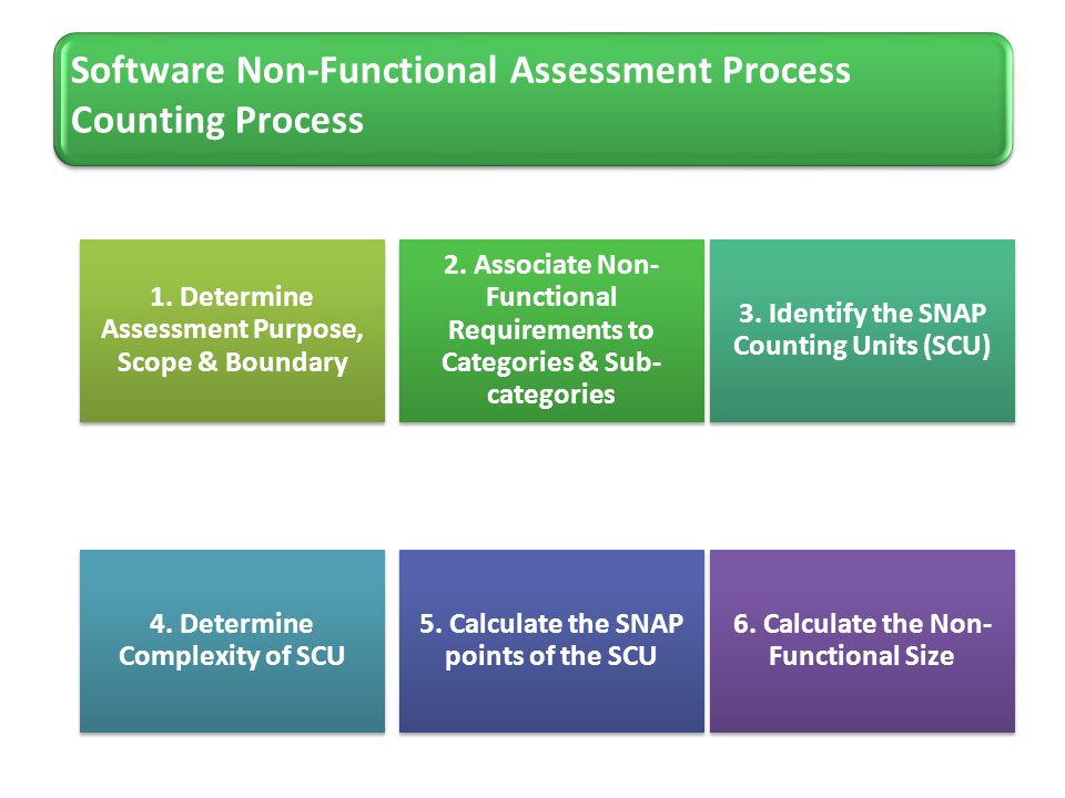 Software Non-Functional Assessment Process Counting Process