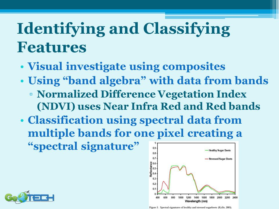 Identifying and Classifying Features