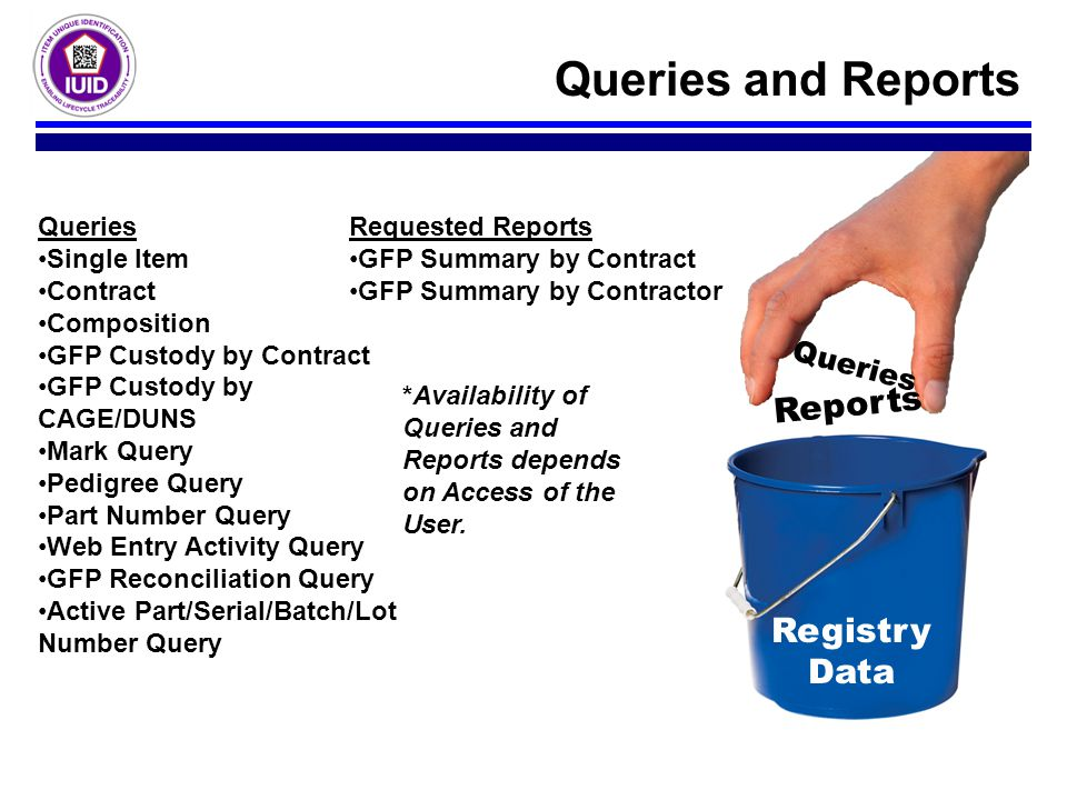 Queries and Reports Reports Registry Data Queries Queries Single Item