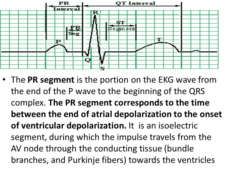 The PR segment is the portion on the EKG wave from the end of the P wave to the beginning of the QRS complex.