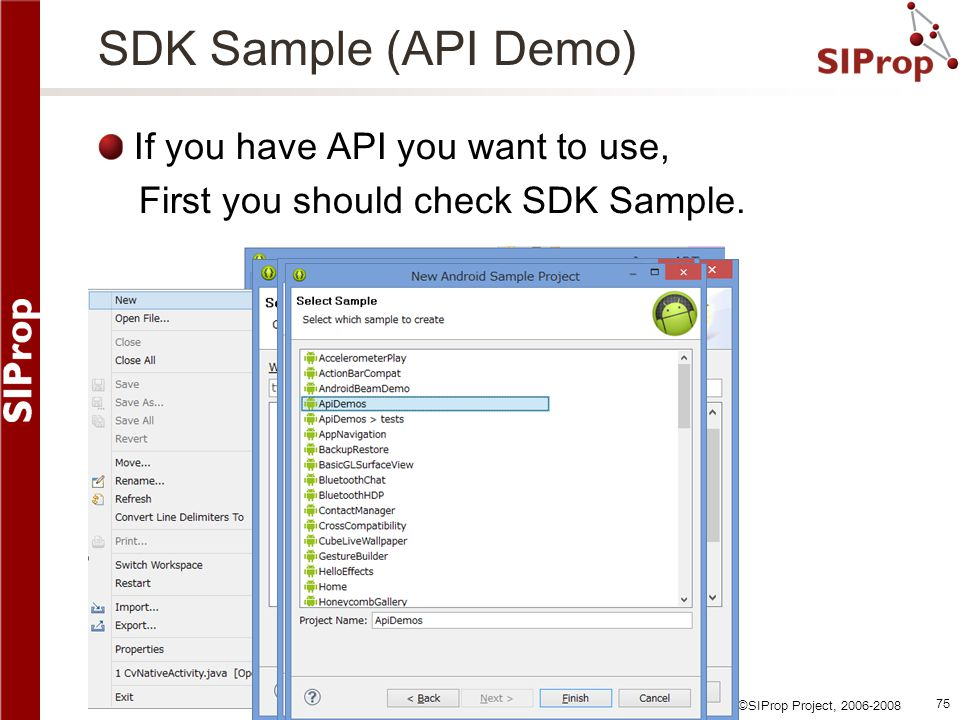 SDK Sample (API Demo) If you have API you want to use,