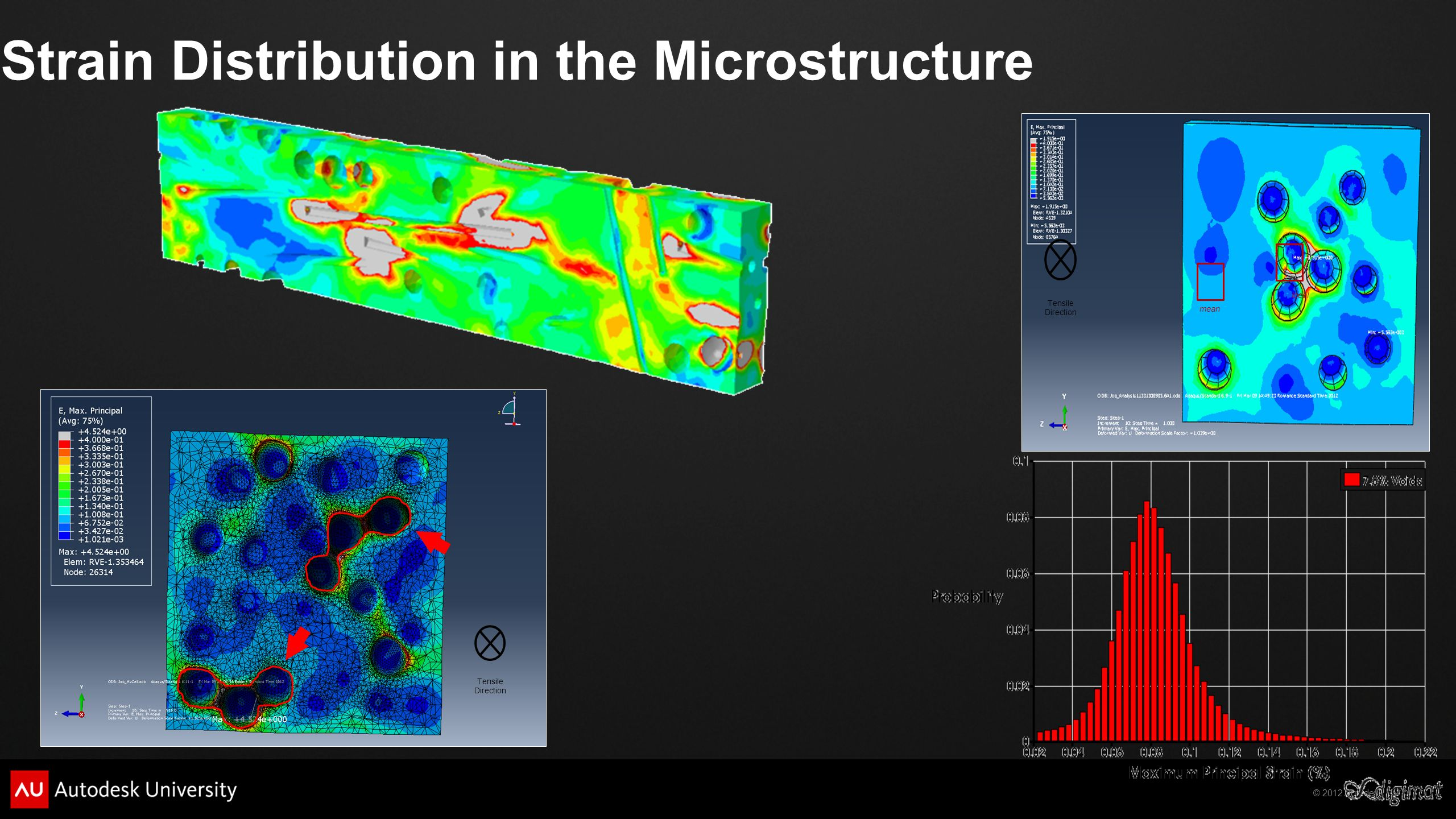 Strain Distribution in the Microstructure