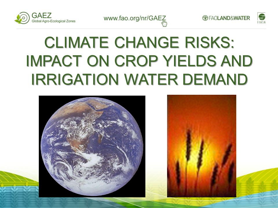 CLIMATE CHANGE RISKS: IMPACT ON CROP YIELDS AND IRRIGATION WATER DEMAND