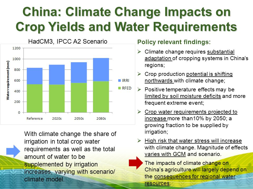 China: Climate Change Impacts on Crop Yields and Water Requirements