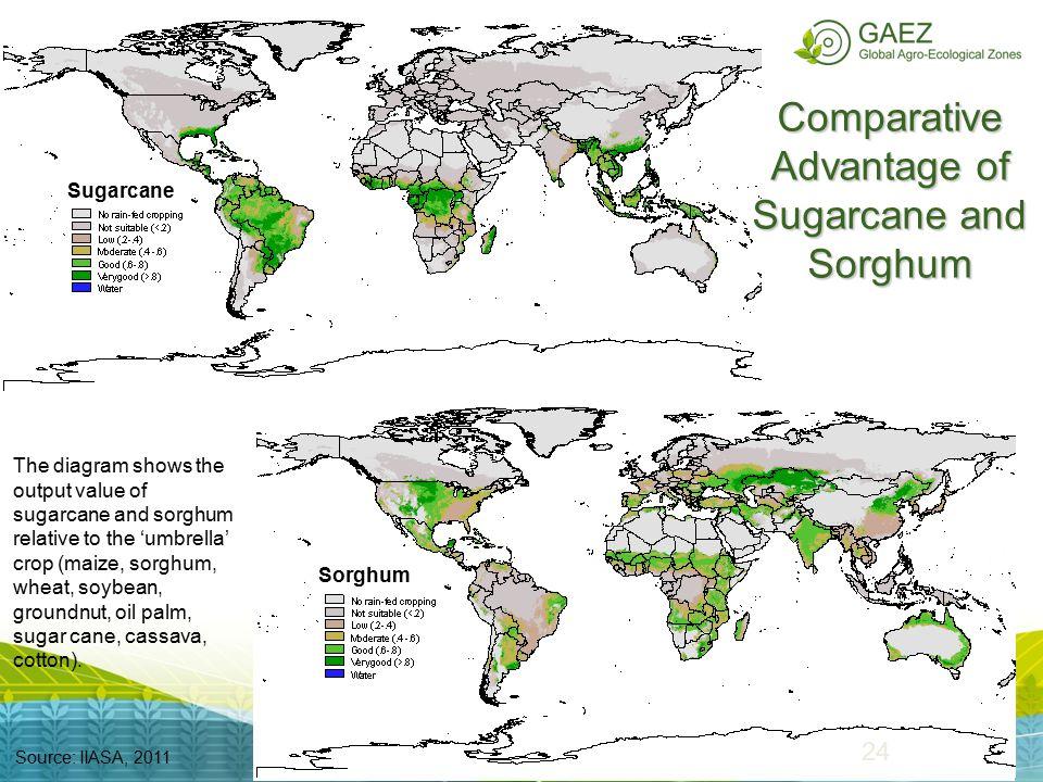 Comparative Advantage of Sugarcane and Sorghum