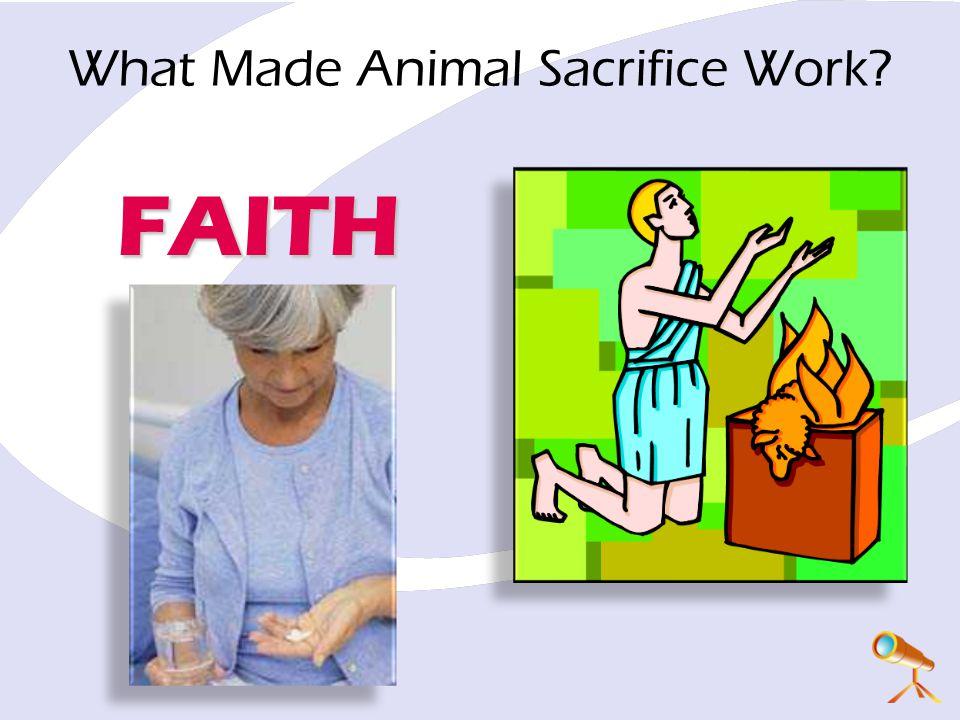 What Made Animal Sacrifice Work