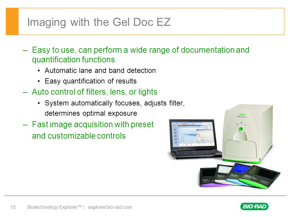 Imaging with the Gel Doc EZ