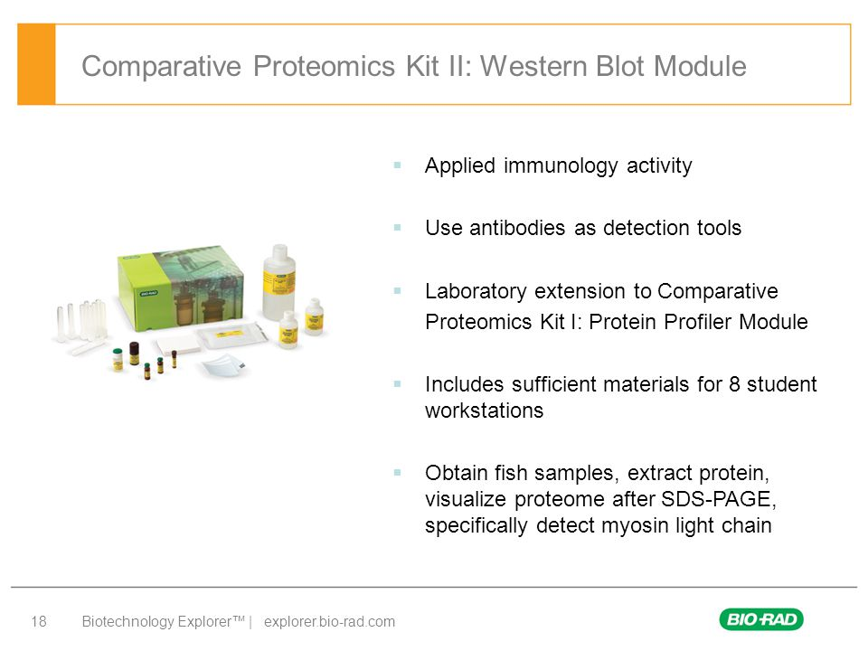 Comparative Proteomics Kit II: Western Blot Module