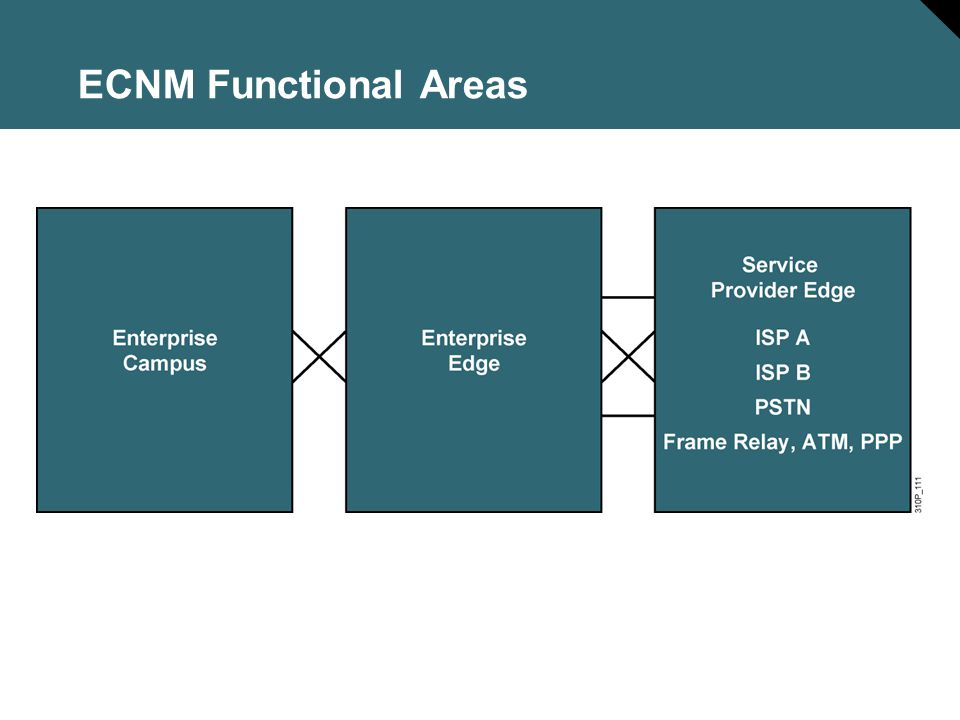 ECNM Functional Areas