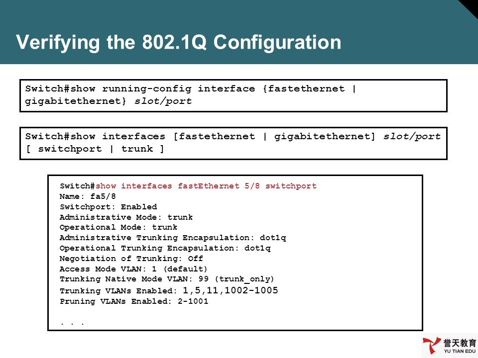Verifying the 802.1Q Configuration