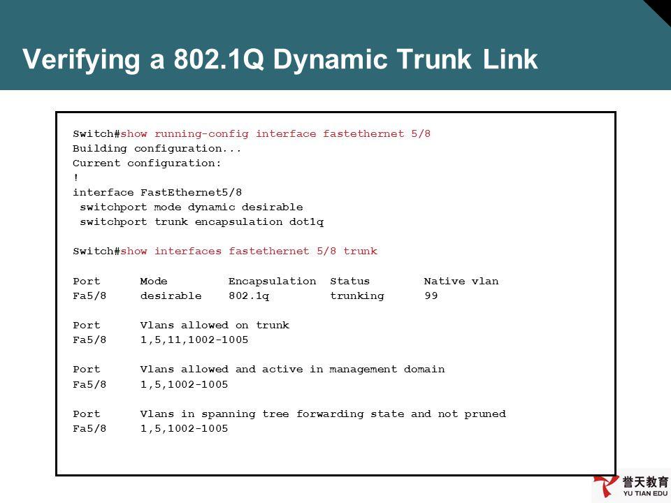 Verifying a 802.1Q Dynamic Trunk Link