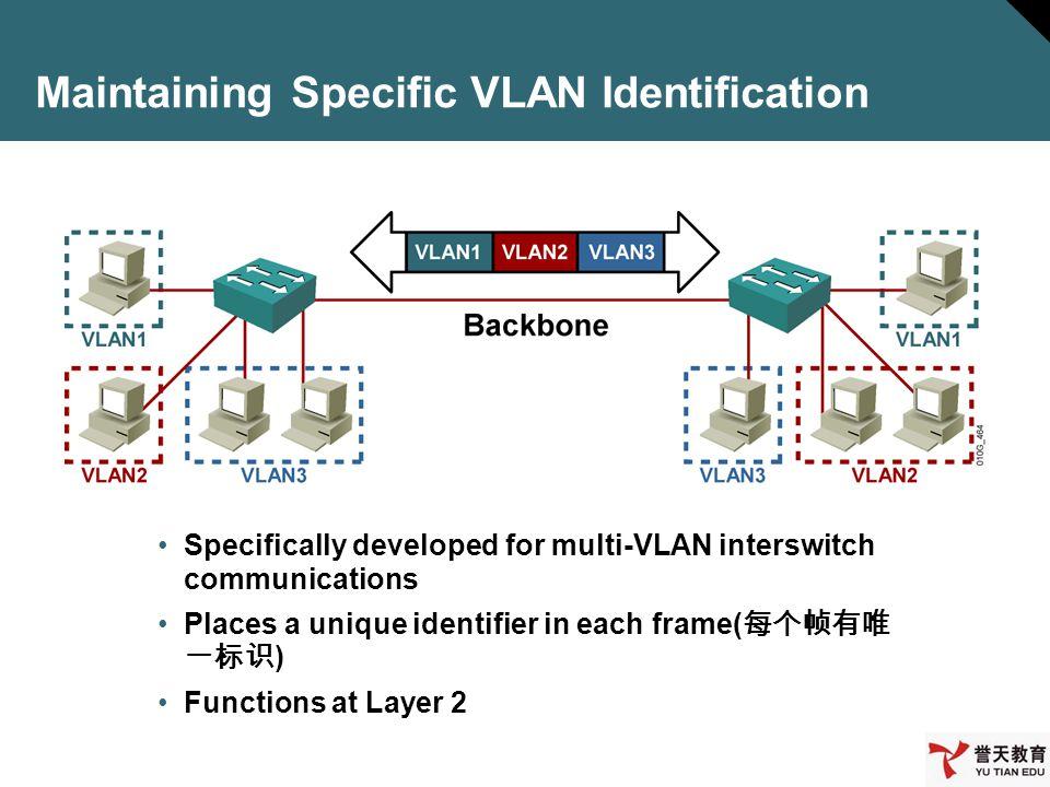 Maintaining Specific VLAN Identification