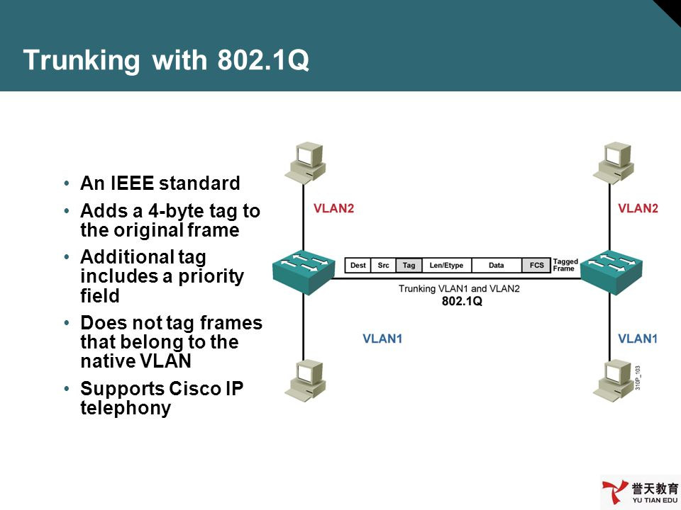 Trunking with 802.1Q An IEEE standard