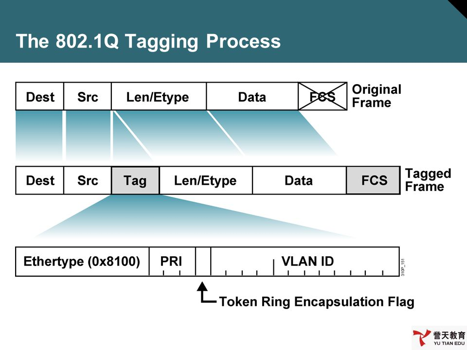 The 802.1Q Tagging Process