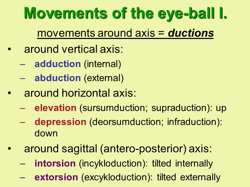Movements of the eye-ball I.
