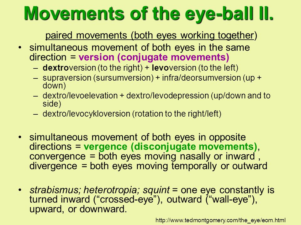 Movements of the eye-ball II.