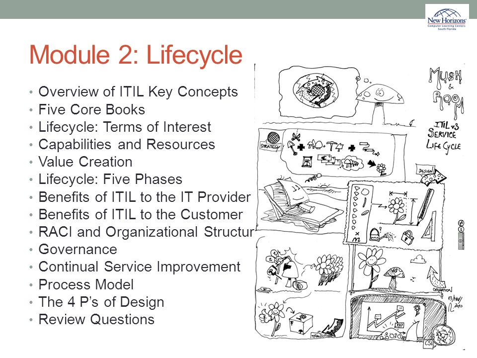 Module 2: Lifecycle Overview of ITIL Key Concepts Five Core Books
