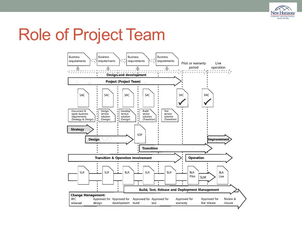 Role of Project Team